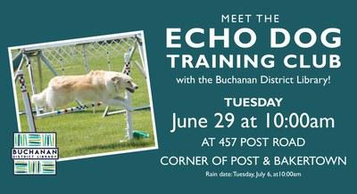 Echo Dog Training Club Agility Demonstration